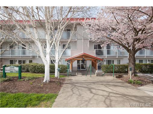 Real Estate Listing MLS 364801