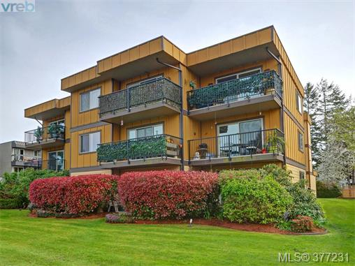 Real Estate Listing MLS 377231