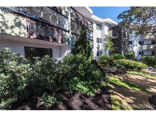 Real Estate Listing MLS 383410