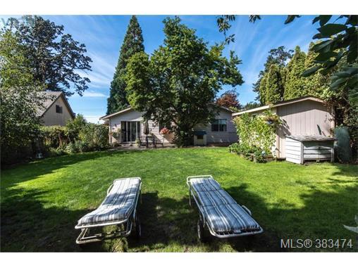Real Estate Listing MLS 383474